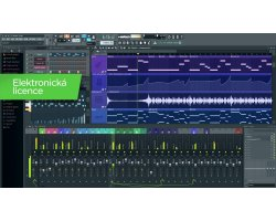 Image Line FL Studio 12 Signature Edition Bundle EDU (el.licence)